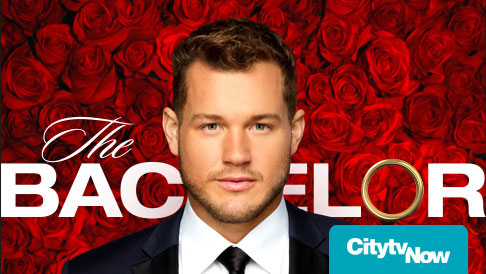 Watch The Bachelor Online - See New TV Episodes Online Free